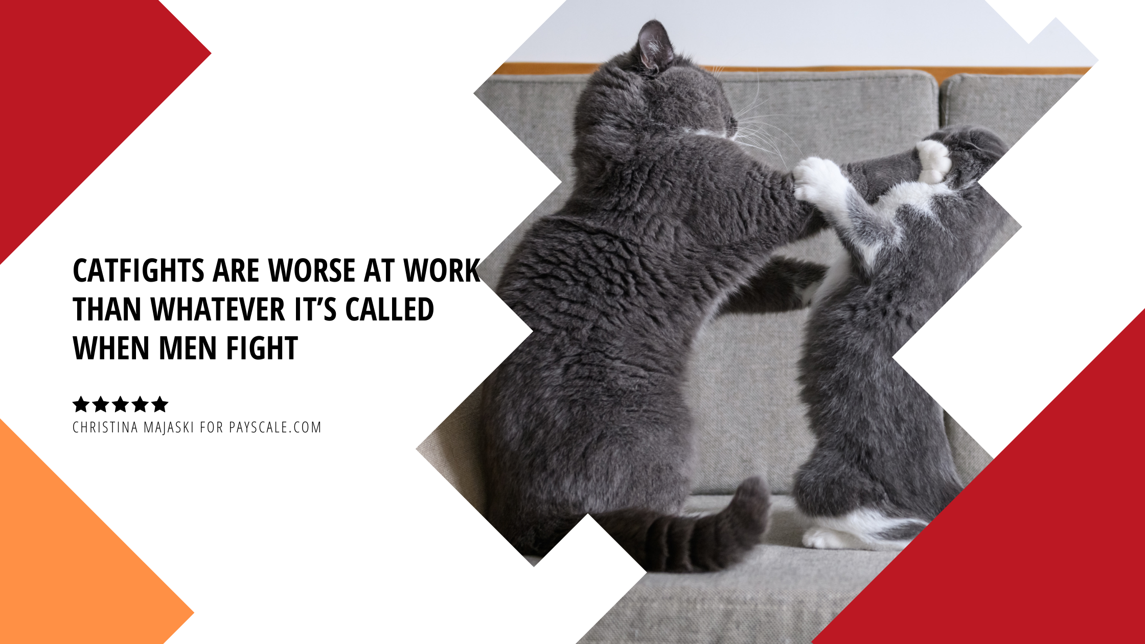 CATFIGHTS ARE WORSE AT WORK THAN WHATEVER IT'S CALLED WHEN MEN FIGHT