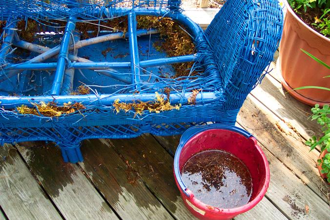 Wicker Loveseat Chair Garden Container Craft Spaghnum Moss