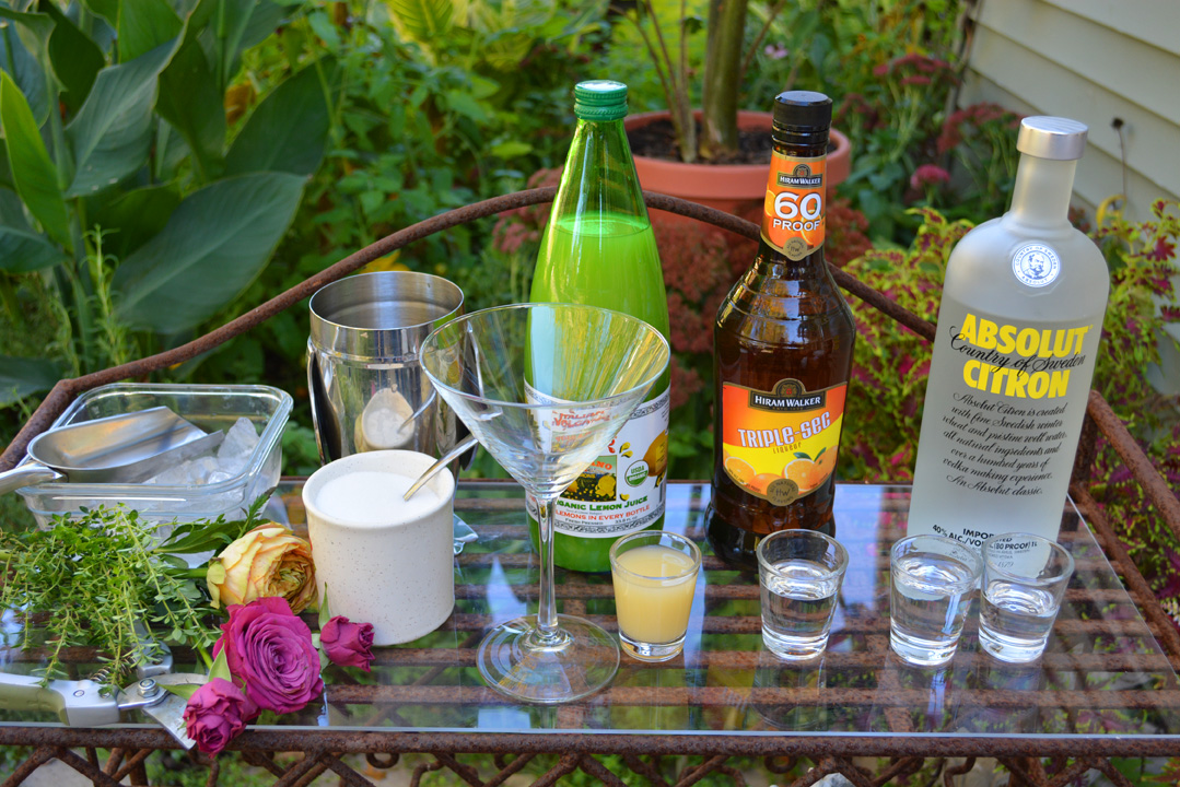 Lemon Thyme Martini Cocktail Recipe Ingredients