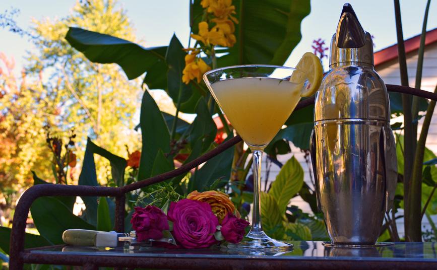 Lemon Thyme Martini Cocktail Recipe