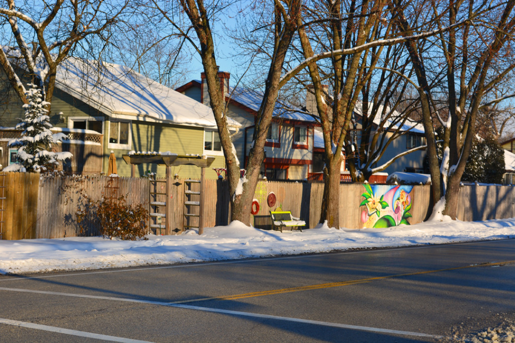 Pollinator Fence Graffiti Experiment Photo