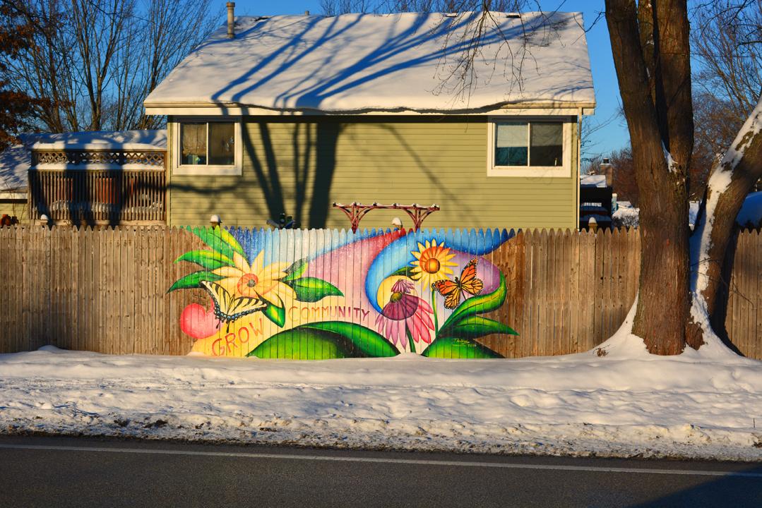 Pollinator Fence Graffiti ExperimentPollinator Fence Graffiti Experiment