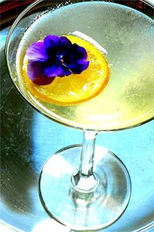 Cocktail Garden Lemon Drop Martini