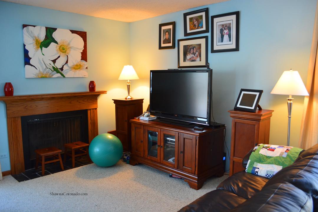 LED Lightbulb Experiment in Family Room