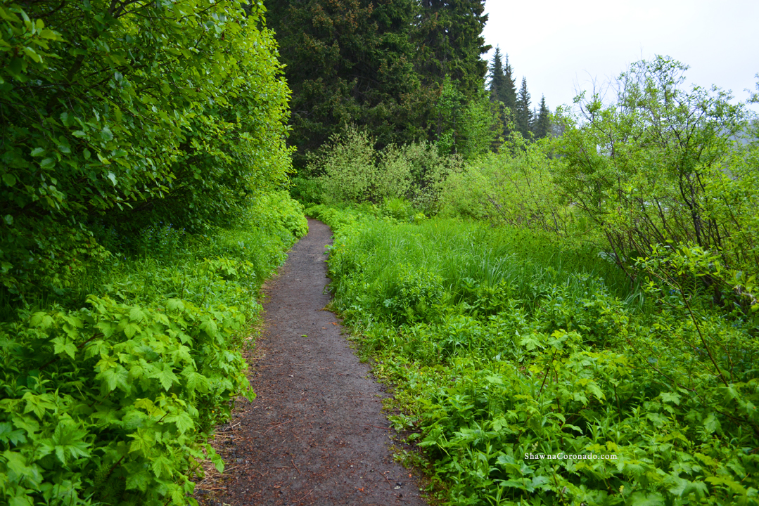 Hiking Trails copyright Shawna Coronado