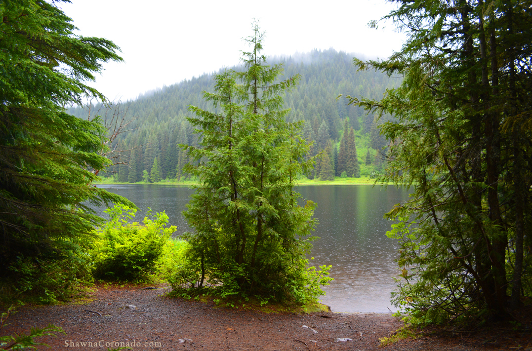 Reduce Stress with a Park Visit