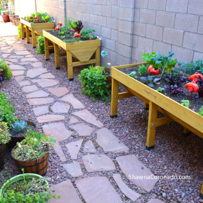 Grow Shade Vegetable Plants in an Elevated Garden Bed