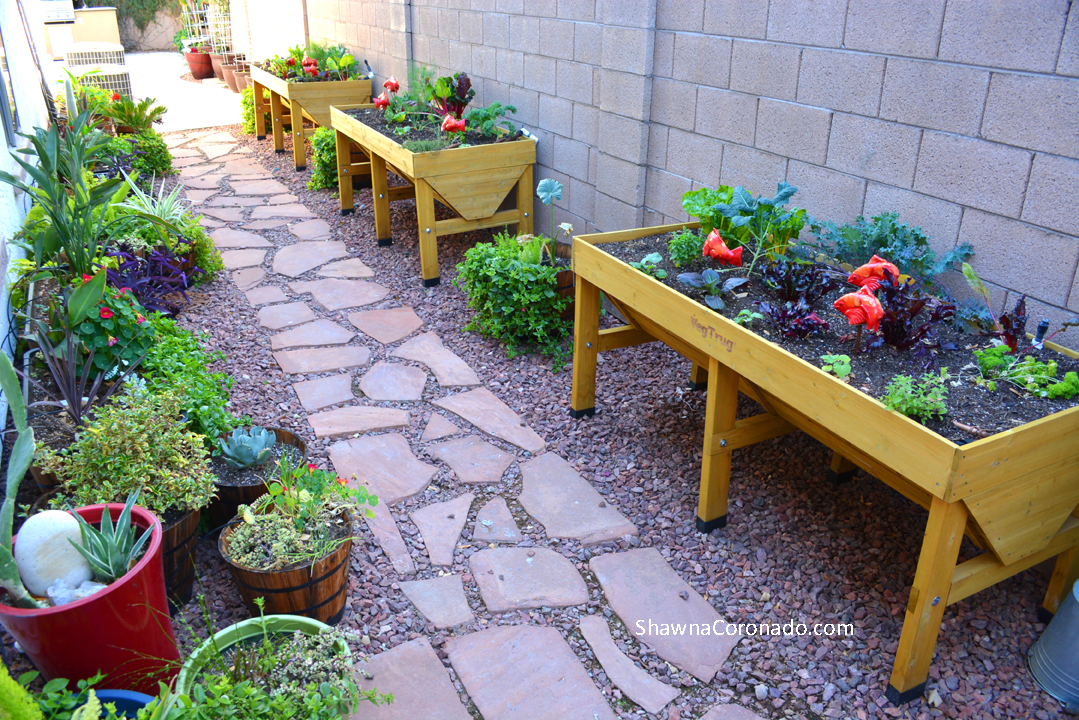 Elevated Garden beds planted with vegetables