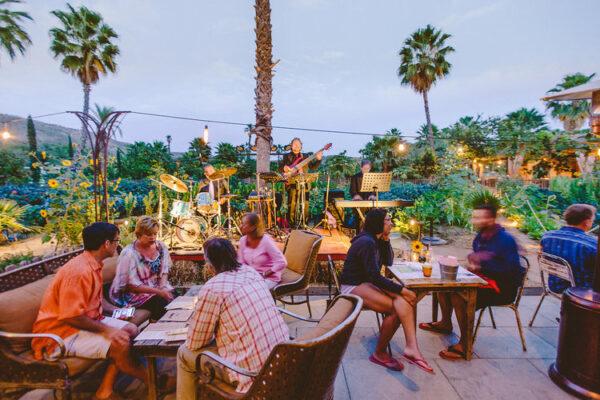 Mejores Restaurantes en Cabo San Lucas (2021)