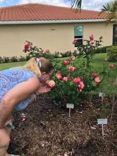 Karen-Sullivan-taking-time-to-smell-the-roses-Double-Delight-HT