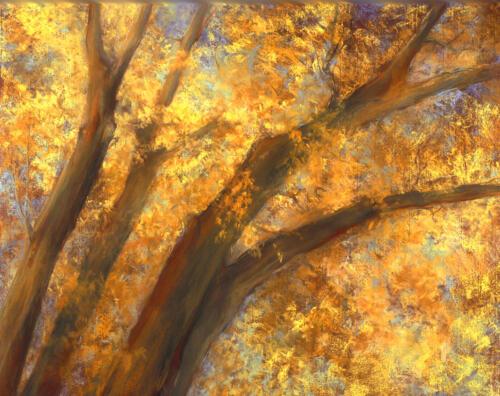 Taos Autumn Landscape