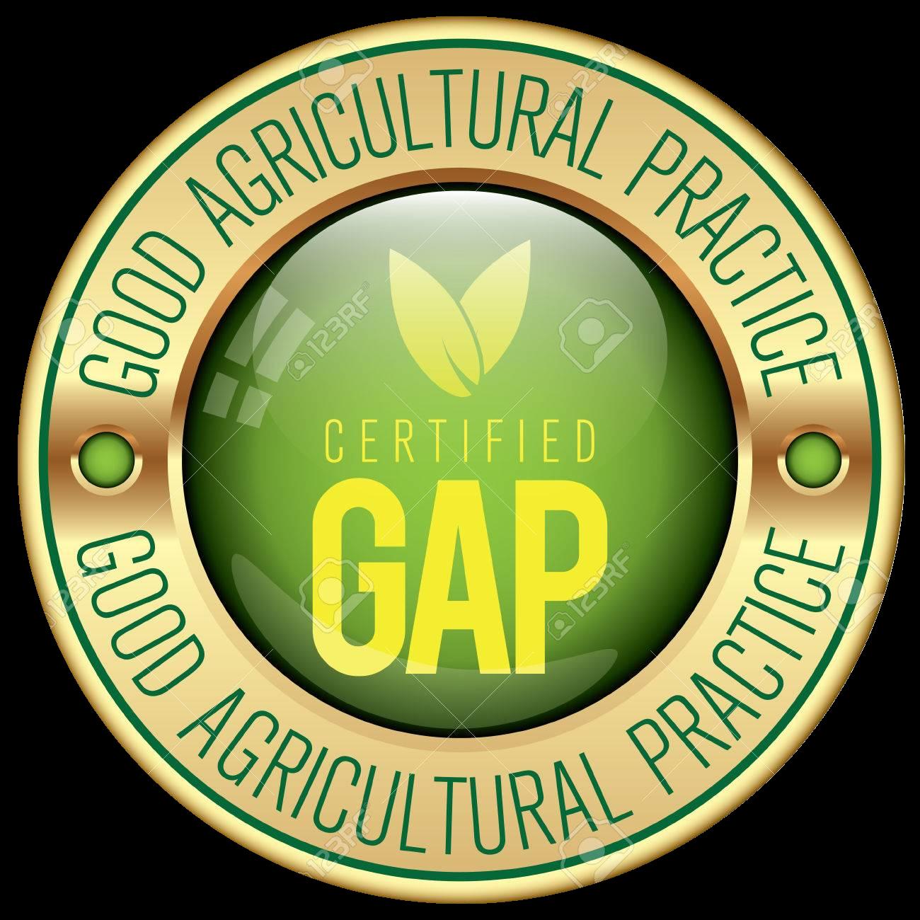 GAP Certified