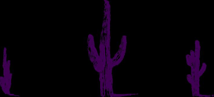 Welcome to Tucson, Arizona