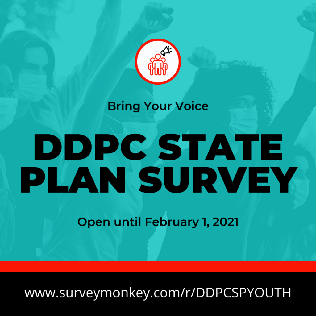 Bringing the Voices of Young People to the DDPC State Plan