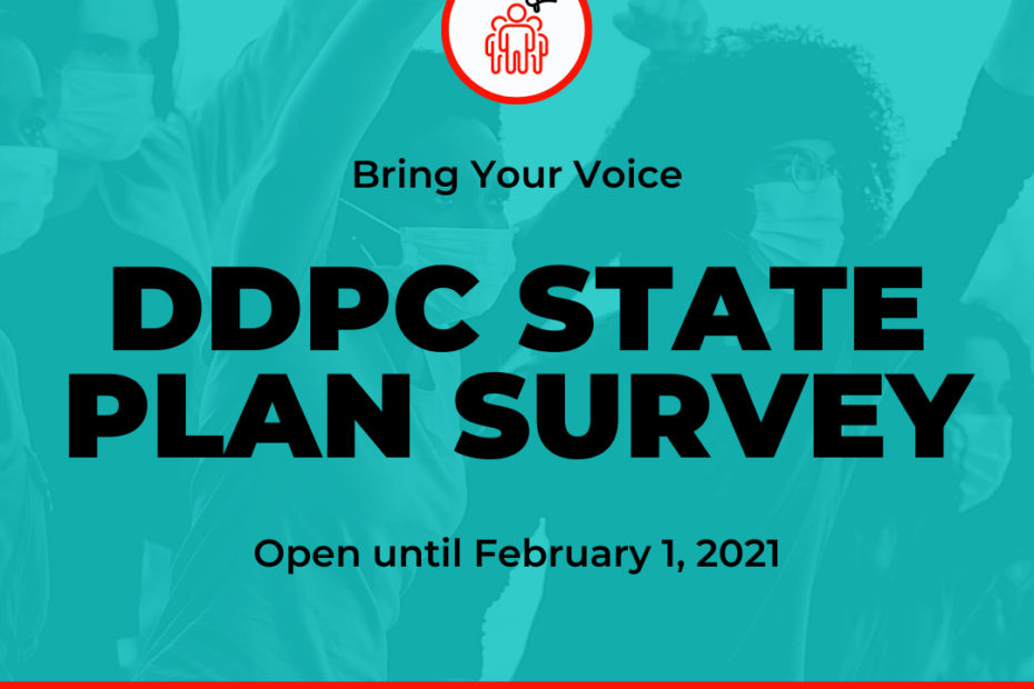 "Young people holding their fists up in the background. Text reads "" Bring Your Voice. DDDPC State Plan Survey. Open until February 1, 2021."""