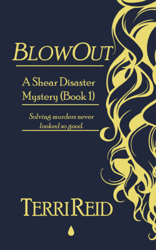 Book Cover: BlowOut: A Shear Disaster Mystery (Book One)