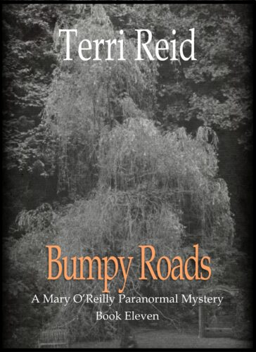 Book Cover: Bumpy Roads - A Mary O'Reilly Paranormal Mystery (Book 11)