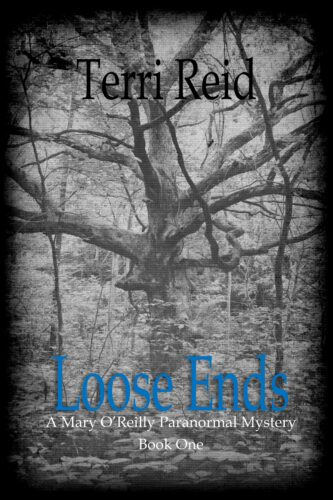 Book Cover: Loose Ends - A Mary O'Reilly Paranormal Mystery (Book 1)