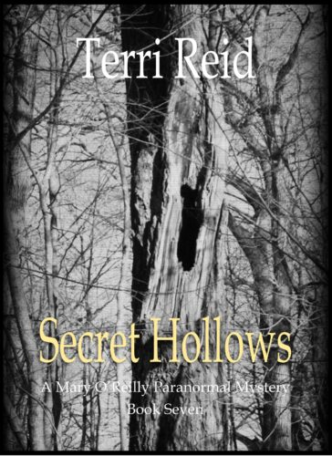 Book Cover: Secret Hollows - A Mary O'Reilly Paranormal Mystery (Book 7)
