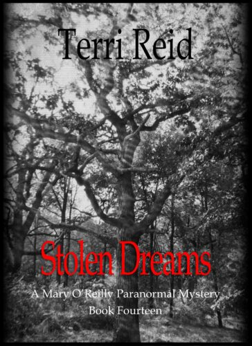 Book Cover: Stolen Dreams - A Mary O'Reilly Paranormal Mystery (Book 14)