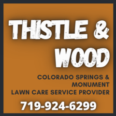 Thistle & Wood