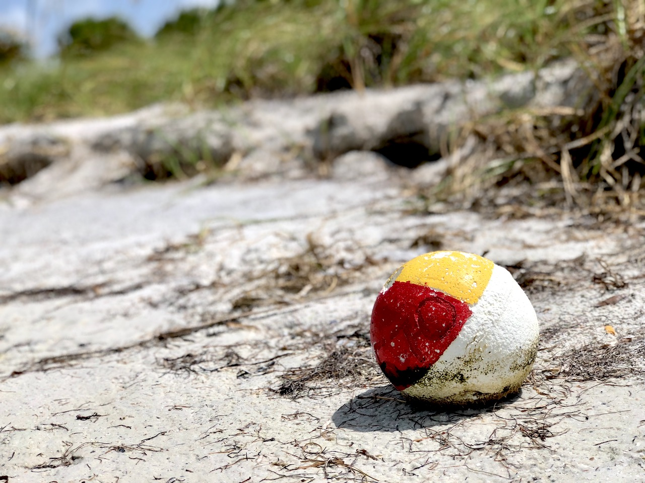 Fort de Soto is one of the most beautiful beaches on the Gulf of Mexico