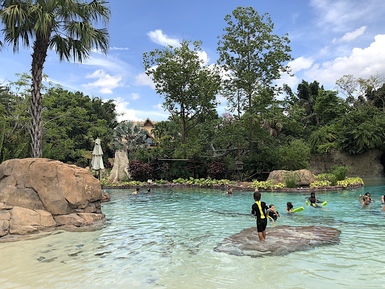 Discovery Cove Monkeys