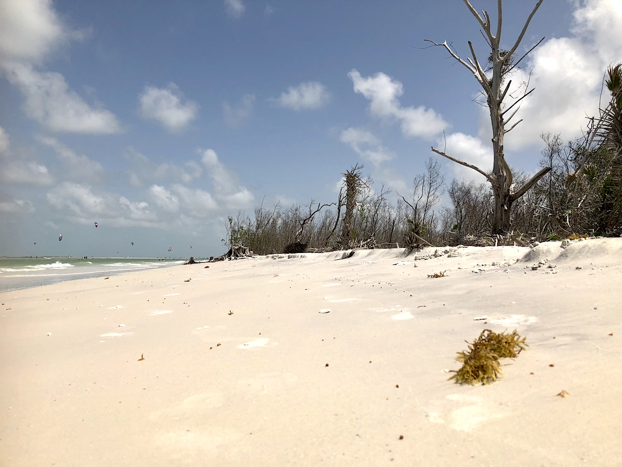 Fort de Soto is the perfect day trip from Orlando