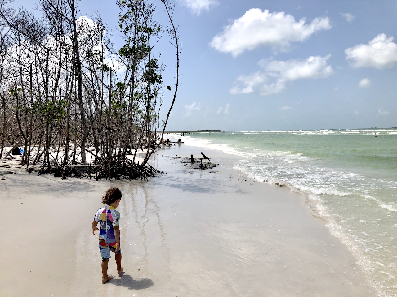 Fort de Soto Beach is a very natural beaches with no buildings in the background, but a wonderful nature and fauna