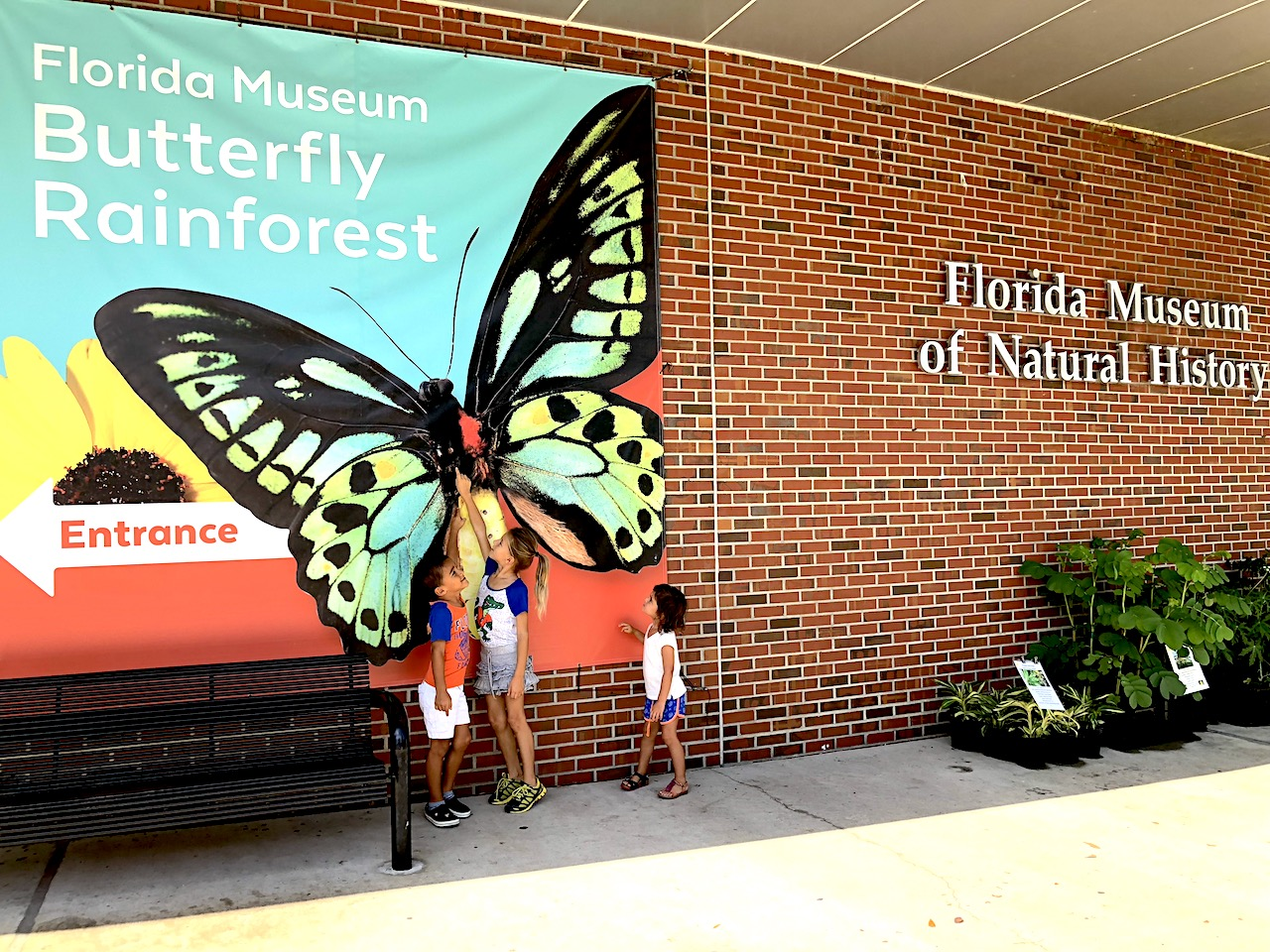 Florida Museum of Natural History. 2-day itinerary for families in Gainesville, FL #gainesville #florida #tourofflorida #alachuacounty #gainesvilleFL #universityofflorida #UF #gogators #Gainesvillewithkids #gainesvilleitinerary