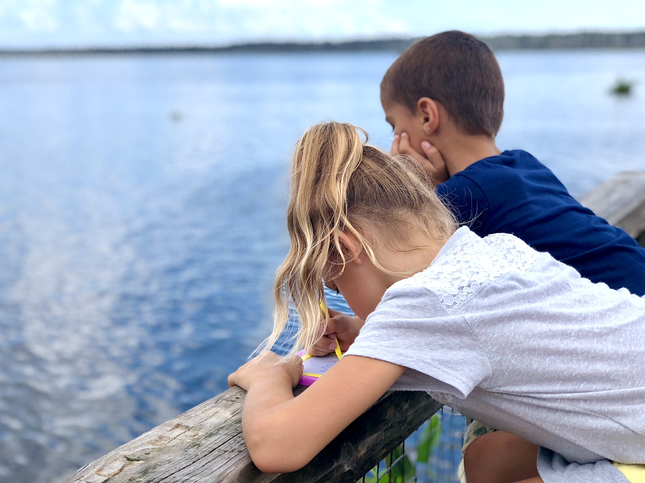 Kids in Gainesville - 2-day itinerary for families in Gainesville, FL #gainesville #florida #tourofflorida #alachuacounty #gainesvilleFL #universityofflorida #UF #gogators #Gainesvillewithkids #gainesvilleitinerary