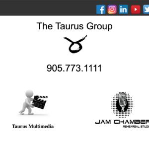 The Taurus Group Website