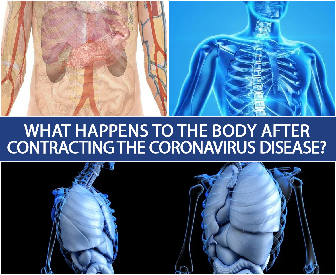 What Happens To The Body After Contracting The Coronavirus Disease