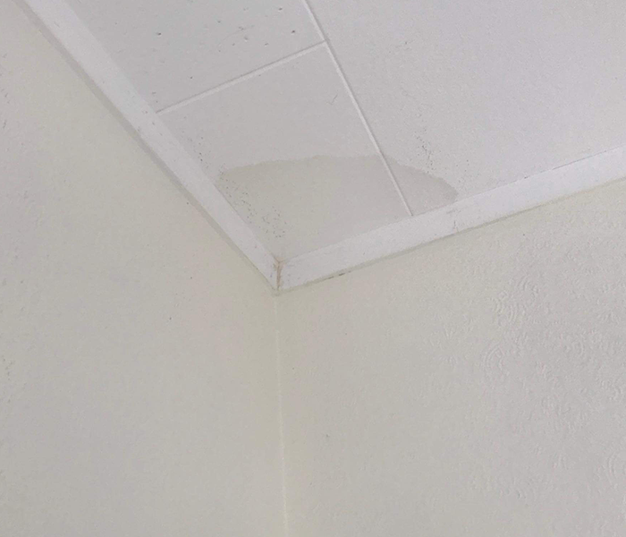Leaks from the ceiling are a sign of poor roof maintenance.