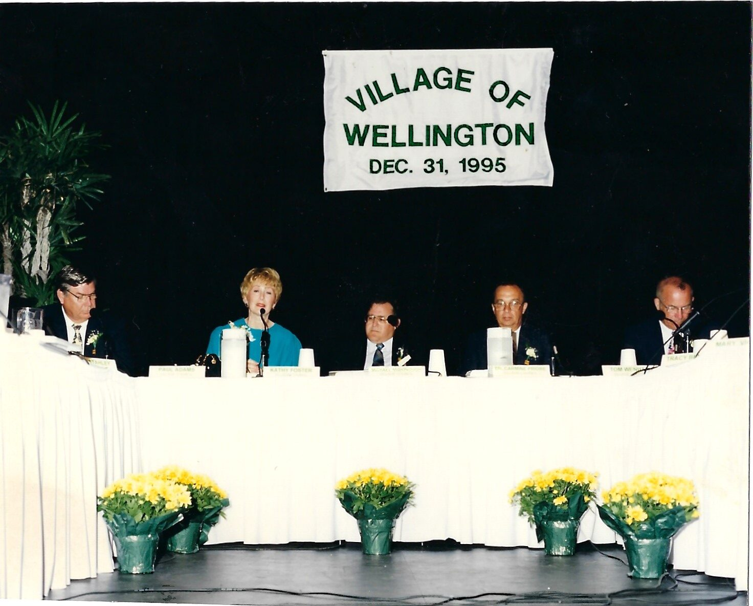 Inaugural Village of Wellington Town Council Meeting