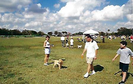 Wellington Dog Park