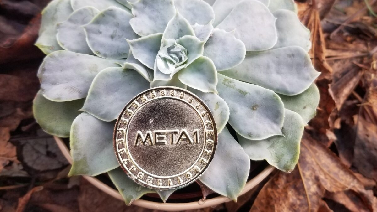 META 1 Coin Report: A New Currency for a New Digital-First World