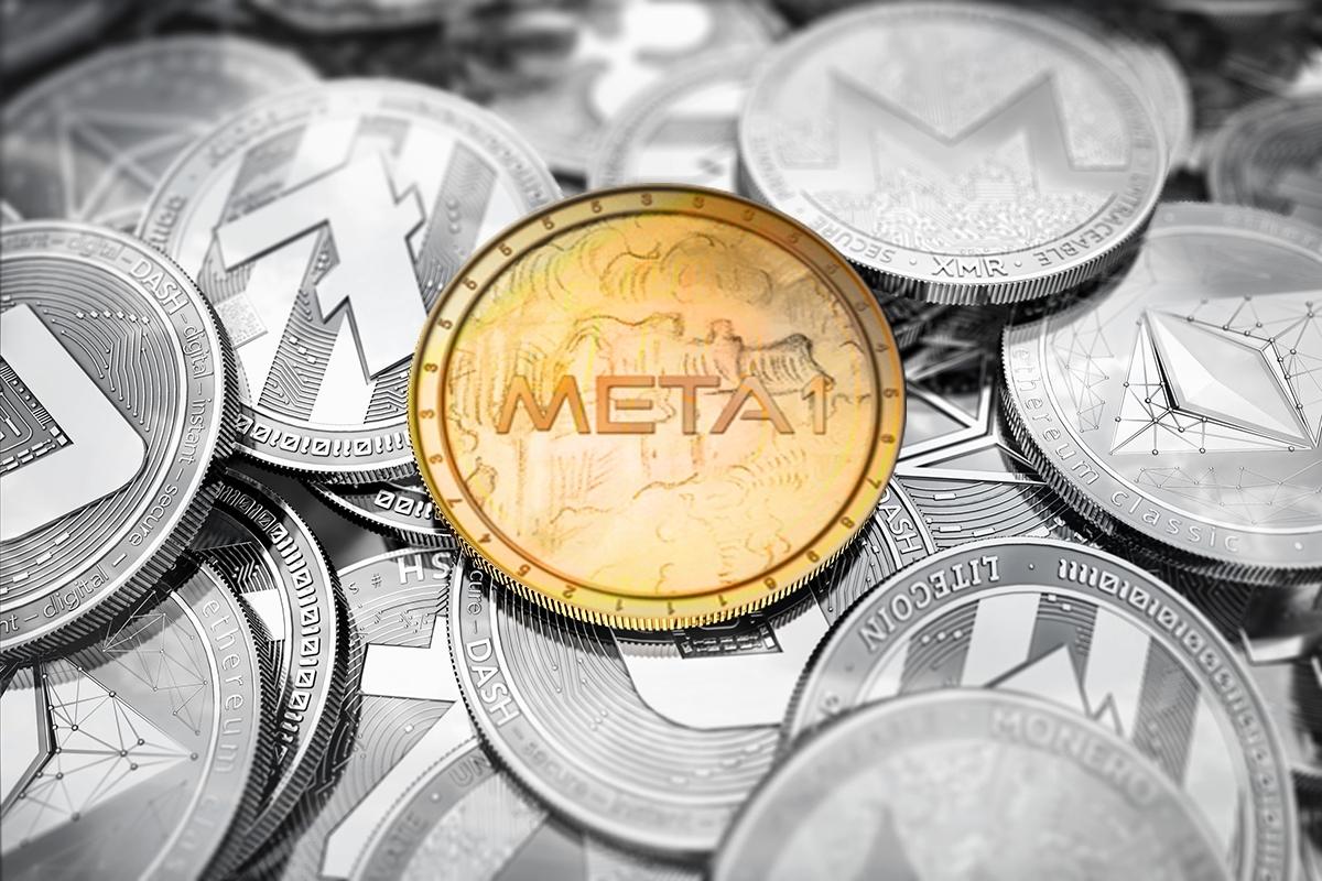 META 1 Coin Report Economy