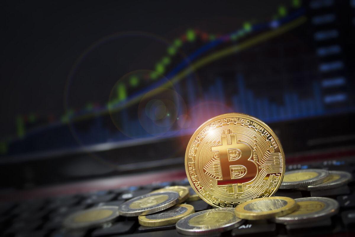 META 1 Coin Report: Bitcoin's Revival Boom or Bubble? Part 1