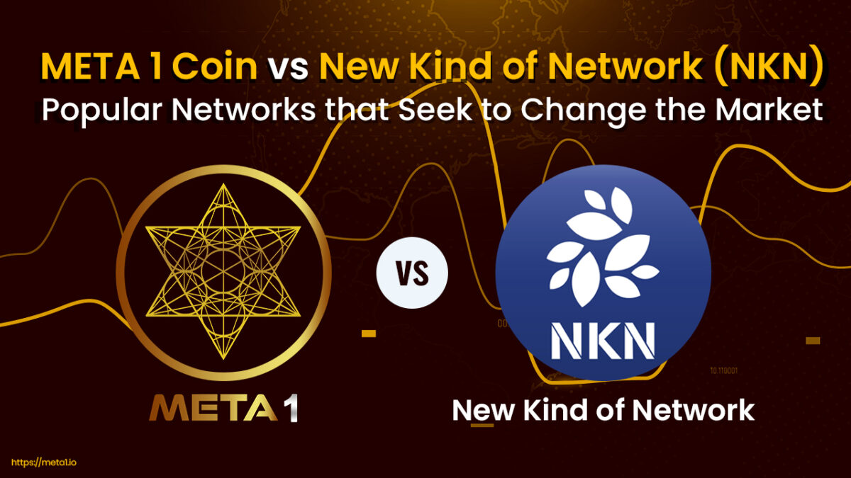 The New Kind of Network (NKN) and META 1 are projects with lots of potential in the market.