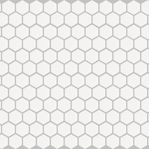 basic hexagon - white