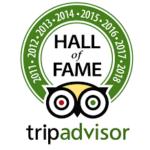The trip advisor hall of fame logo