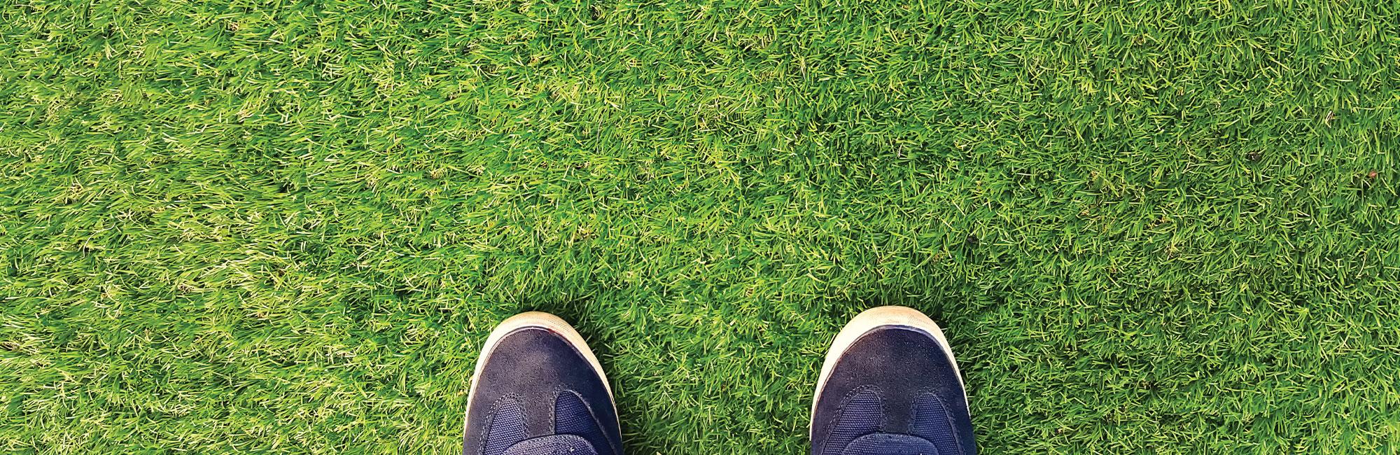 TURF nerd DFW | Keeping You Green All Year Long