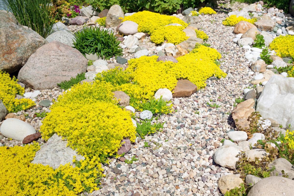 landscape pebbles drainage