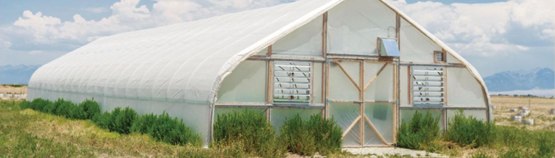 Cloud Co Farms CBD Tincture Oil Distributors in Washington State