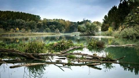 मवेशी चराने गये अधेड़ की कुम्हरी नदी में डूबने से मौत