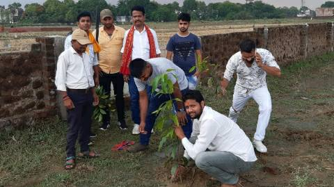 Tree-planting-young.jpg