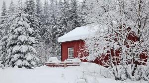 live-norway-oslo-winter-lake-house