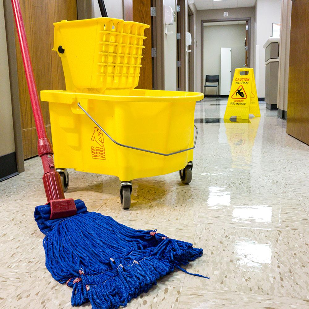 Ashburn Floor Cleaner