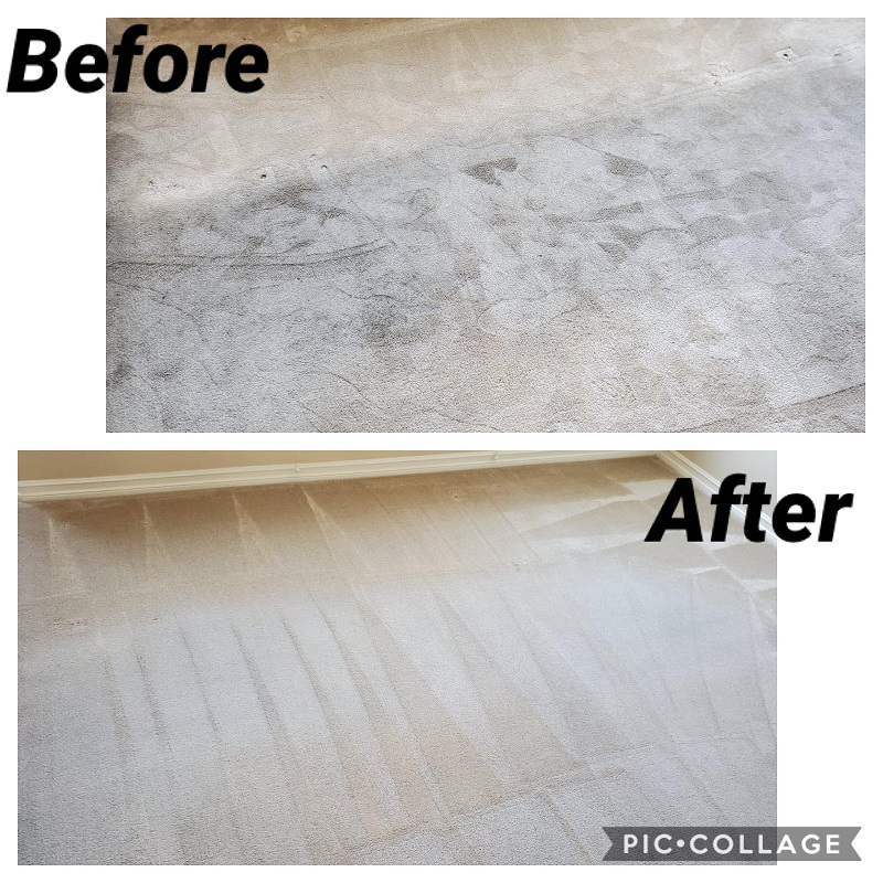 pro steam carpet cleaning long beach before and after